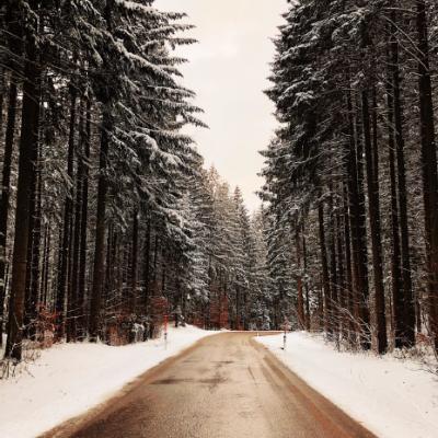 © JULIJA DAVYDOVA